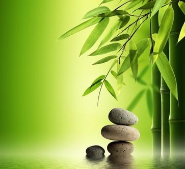 Wellness bilder grün  Kosmetik, die es nicht an jeder Ecke gibt